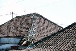 bali2004-taifu.jpg